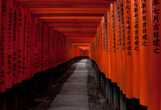 Torii gates at Fushimi Inari, Kyoto. Torii gates run for miles at the shrine of Fushimi Inari, in Kyoto Stock Image