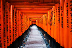 Torii gates at Fushimi Inari, Kyoto Royalty Free Stock Photos