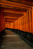 Torii gates at Fushimi Inari Royalty Free Stock Image