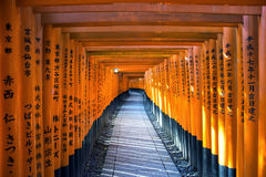 Torii gates in Fushimi Inari Shrine, Kyoto, Japan.  Royalty Free Stock Images