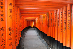 Torii gates in Fushimi Inari Shrine. Kyoto, Japan Stock Photography