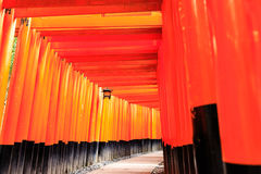 Torii gates in Fushimi Inari Shrine, Kyoto. Japan Royalty Free Stock Photography