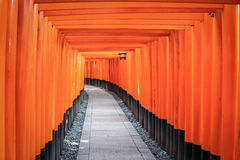 Torii gates in Fushimi Inari Shrine - Kyoto, Japan Royalty Free Stock Photo