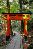 Torii gates in Fushimi Inari Shrine - Kyoto, Japan. Torii gates in Fushimi Inari Shrine in Kyoto, Japan Royalty Free Stock Images