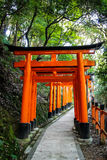 Torii gates in Fushimi Inari Shrine - Kyoto, Japan. Torii gates in Fushimi Inari Shrine in Kyoto, Japan Royalty Free Stock Image