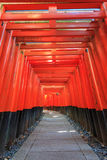 Torii gates in Fushimi Inari Shrine. Kyoto, Japan Royalty Free Stock Photography