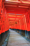 Torii gates in Fushimi Inari Shrine. Kyoto, Japan Royalty Free Stock Images