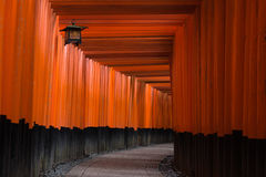 Torii gates in Fushimi Inari Shrine Stock Images