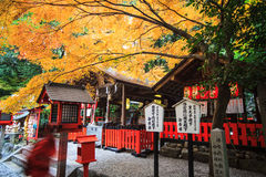 Torii gates in Fushimi Inari Shrine, Kyoto, Japan Royalty Free Stock Photos