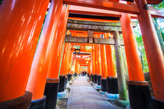 Torii gates in Fushimi Inari Shrine, Kyoto, Japan Stock Image