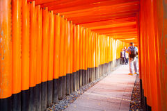 Torii gates in Fushimi Inari Shrine, Kyoto, Japan Stock Images
