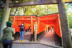 Torii gates in Fushimi Inari Shrine, Kyoto, Japan Royalty Free Stock Photography