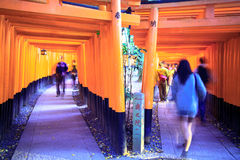 Torii gates in Fushimi Inari Shrine, Kyoto, Japan Stock Photos