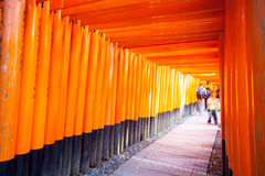 Torii gates in Fushimi Inari Shrine, Kyoto, Japan Royalty Free Stock Images