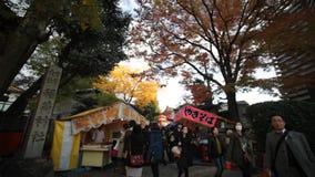 Torii gates in Fushimi Inari Shrine, Kyoto, Japan. Kyoto, Japan - Nov 23, 2013 : Torii gates in Fushimi Inari Shrine, Kyoto, Japan stock video footage