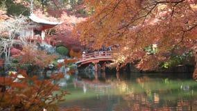 Torii gates in Fushimi Inari Shrine, Kyoto, Japan stock footage