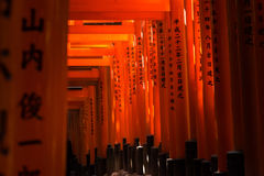 Torii gates at Fushimi Inari Shrine in Kyoto, Japan. Royalty Free Stock Image