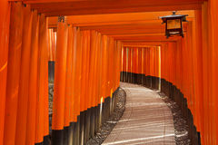 Torii gates of the Fushimi Inari Shrine in Kyoto, Japan. A path underneath a row of torii gates at the Fushimi Inari Shrine 伏見稲荷大社 in Kyoto, Japan Stock Images