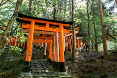 Torii gates at Fushimi Inari Shrine in Kyoto, Japan. Inari is seen as the patron of business, and merchants and manufacturers have traditionally worshipped Royalty Free Stock Photography