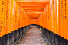 Torii gates in Fushimi Inari Shrine, Kyoto, Japan. Selective focused Stock Photos