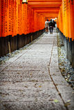 Torii gates of Fushimi Inari Shrine in Kyoto, Japan Royalty Free Stock Images