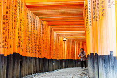 Torii gates of Fushimi Inari Shrine in Kyoto, Japan Royalty Free Stock Photos