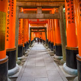 Torii gates at Fushimi Inari shrine in Kyoto Stock Images