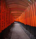 Torii gates in Fushimi Inari Shrine Panorama , Kyoto, Japan Stock Photography