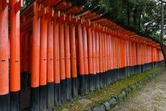 Torii gates at Fushimi Inari-Taish shrine Royalty Free Stock Image