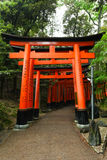Torii gates at Fushimi Inari-Taish shrine Royalty Free Stock Image