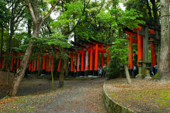 Torii gates at Fushimi Inari-Taish shrine Stock Photography