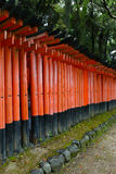 Torii gates at Fushimi Inari-Taish shrine Royalty Free Stock Images