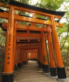 Torii Gates - Fushimi Inari-Taisha - Japan. A line of Torii Gates leading to the inner shrine at Fushimi Inari-Taisha in Kyoto in Japan. This is the most Royalty Free Stock Image