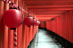 Torii gates at Fushimi Inari-Taisha with paper lanterns Royalty Free Stock Photos