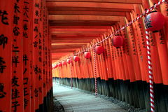Torii gates at Fushimi Inari-Taisha with paper lanterns Stock Image