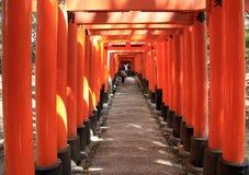 Torii gates of Fushimi Inari Shrine in Kyoto, Japan Royalty Free Stock Photo