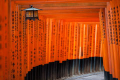 Torii gates in Kyoto Royalty Free Stock Photography