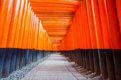 Torii gates at Kyoto Fushimi Inari Shrine Royalty Free Stock Photos