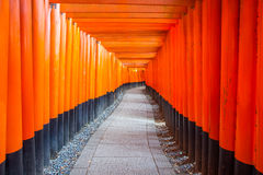 torii gates at Kyoto Fushimi Inari Shrine Royalty Free Stock Photos