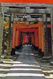 Torii gates, Kyoto, Japan Royalty Free Stock Image