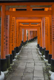 Torii Gates in line Royalty Free Stock Photo