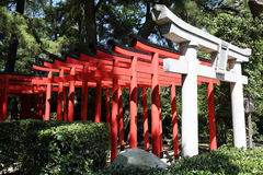 Torii gates at shrine Royalty Free Stock Photo