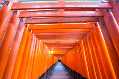 Torii gates Stock Images