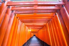 Torii gates Stock Images