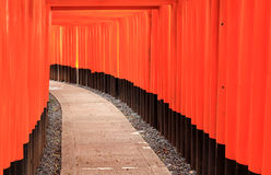 Torii gates of Fushimi Inari Shrine in Kyoto, Japan. Tori Gates at the Fushimi Inari Shrine in Kyoto, Japan Royalty Free Stock Image
