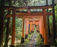 Torii Gatter Fushimi Inari am Schrein stockbild