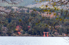 Torii of the Hakone shrine Royalty Free Stock Photos