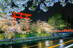 Torii Heian Jingu with cherry blossom in Kyoto Royalty Free Stock Photos