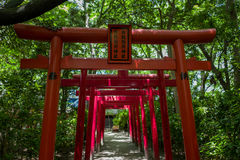 Torii i Fukuoka Arkivbilder