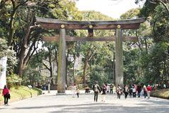 Torii i Meiji Shrine, Tokyo, Japan Royaltyfria Foton